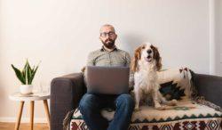 que mascota puedes tener en tu departamento y vivir con éxito