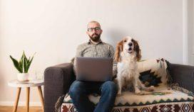 Cómo lograr el éxito al vivir en un departamento y tener mascotas