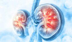 el cáncer de riñón es más frecuente en hombres