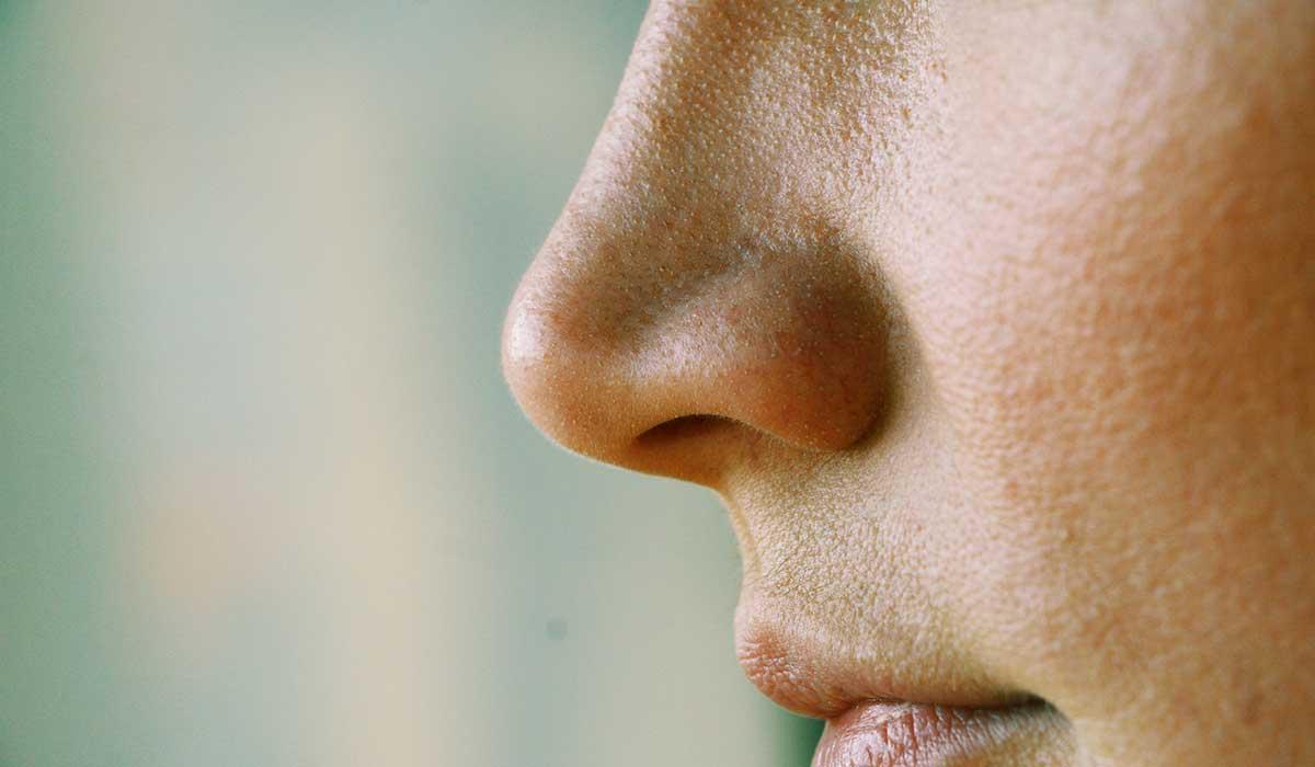 este es el origen de la forma de tu nariz