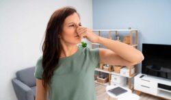 cuidado si percibes estos olores en tu casa