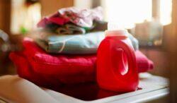 datos curiosos de lavar la ropa