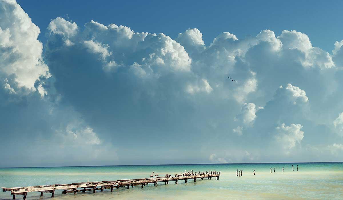 escápate y disfruta del Cuyo en Yucatán