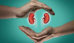 los riñones están relacionados a padecimiento crónico olvidado