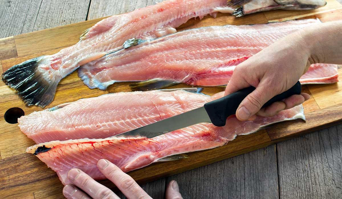 prepara este tirado de pescado para las fiestas patrias