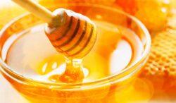 en todo esto te puede ayudar la miel