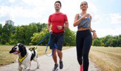 ventajas al ejercitarte con tu perro